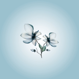 blue-flower-1